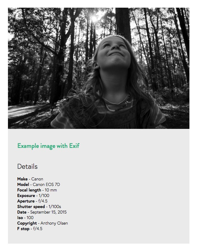 exif-data-zentools