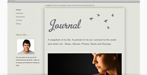 Journal - Personal Blog Joomla Template