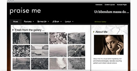 Praise - Photography Joomla Template