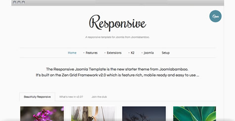 images/stories/responsive/ResponsiveTemplateImage.jpg