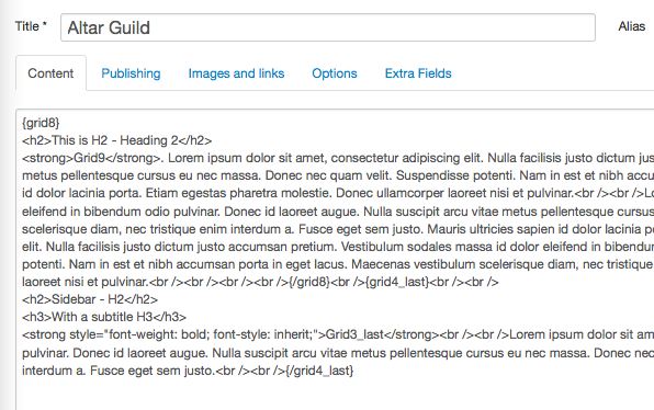 tagstrip-4-no-editor-admin.png